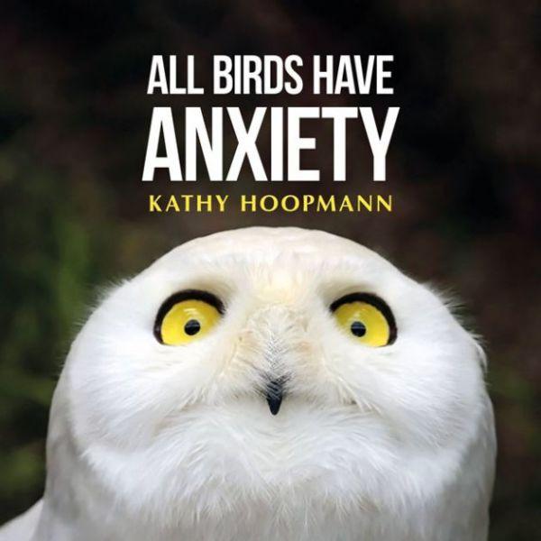 all-birds-have-anxietyAE4F3BBD-D2D8-FD7E-B780-72415F559030.jpg